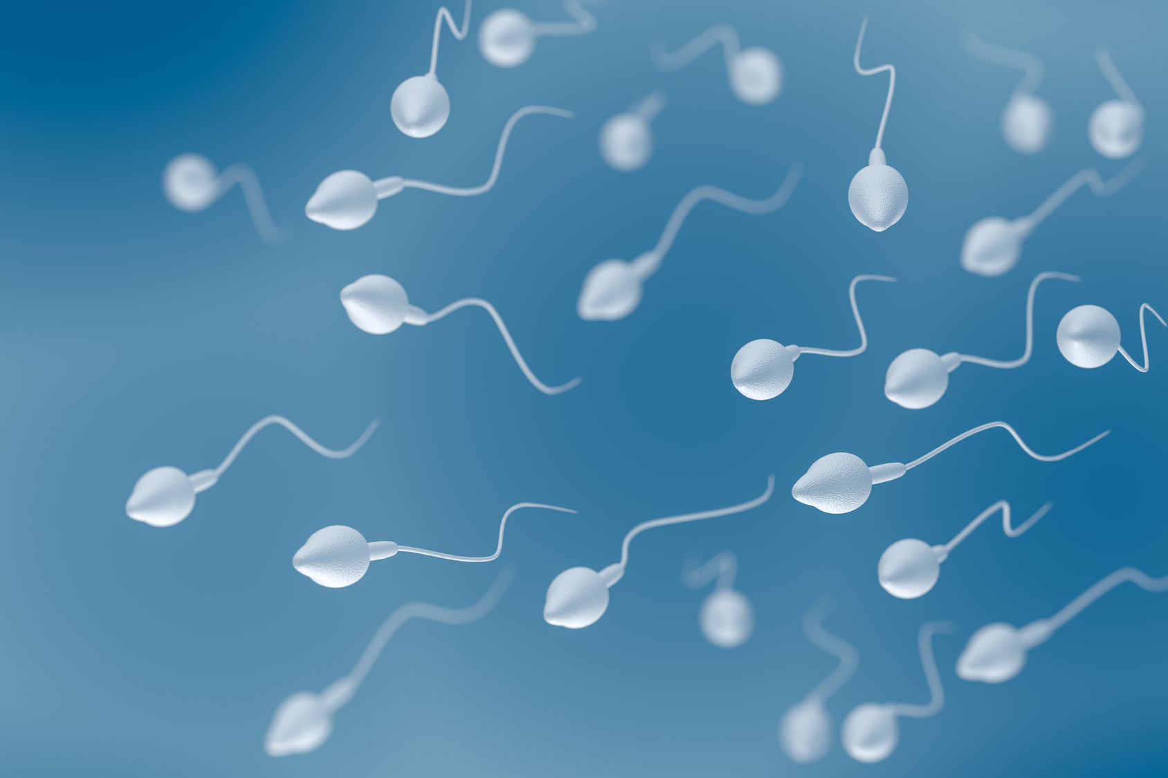 Sperm cells 3D rendered illustration.