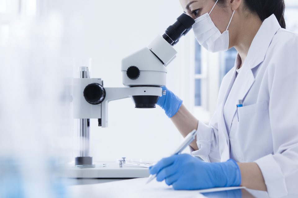 Women researchers are taking notes while looking through the microscope